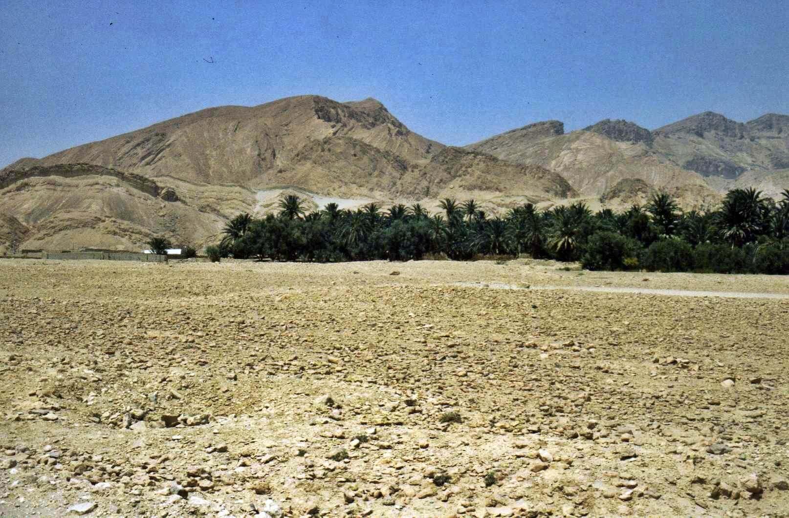 Raid moto 4x4 Tunisie Wild Spot Chebika Gafsa région Moularès