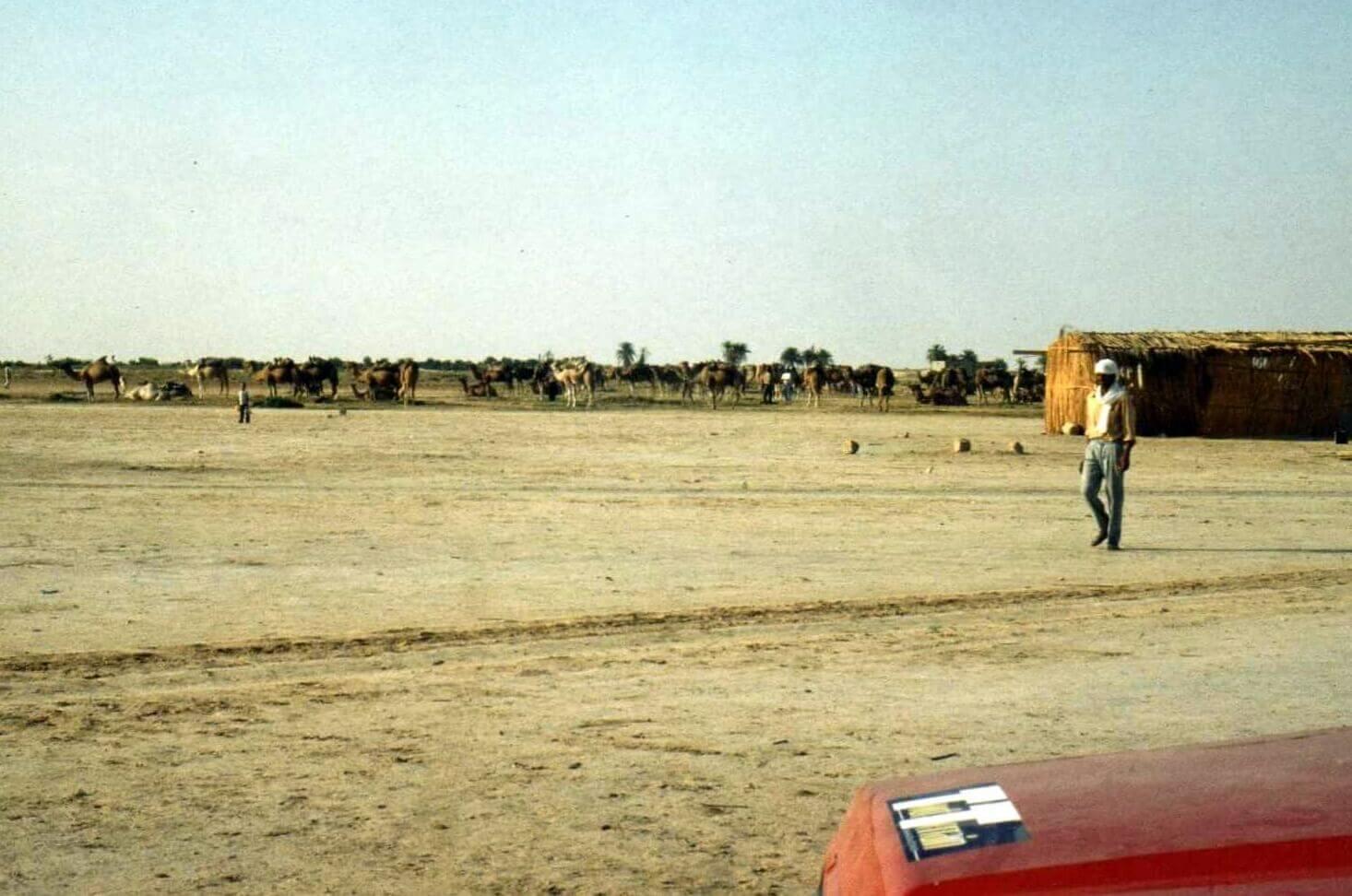 Raid moto 4x4 Tunisie Wild Spot Nefta El Faouar