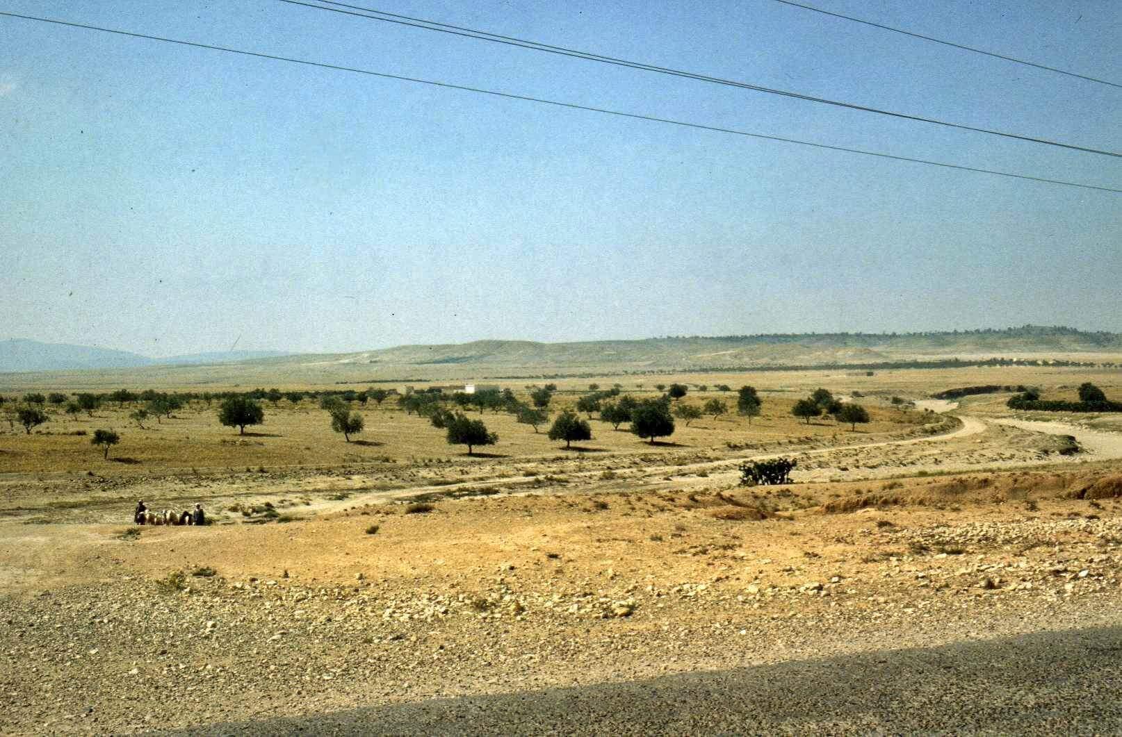 Raid moto 4x4 Tunisie Wild Spot El Kef Chebika -Tajerouine