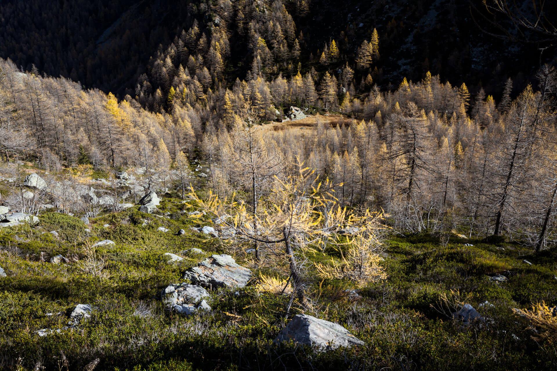 Lago d'Apry Lac Val d'Aoste italie montagne spot photo WildSpot