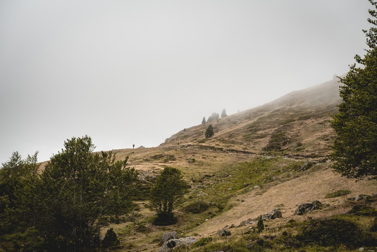 Refuge Ayous Vallee Ossau Wild Spot