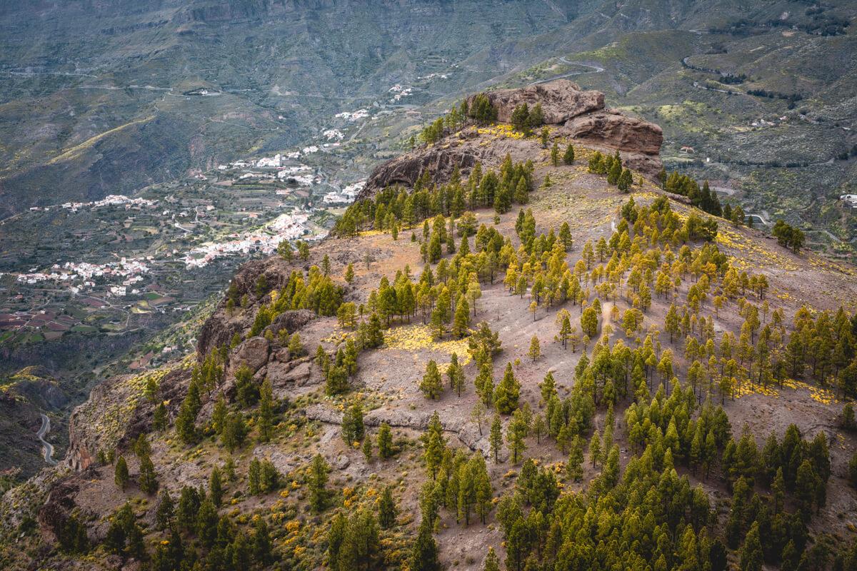 Roque Nublo Gran Canaria Wild Spot Espagne