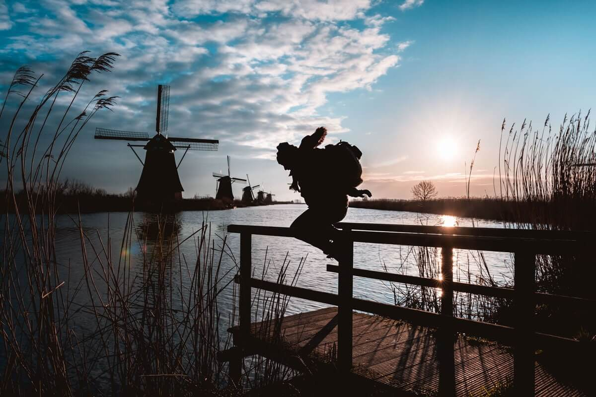 Kinderdijk spot photo WildSpot Aurélien Lévy