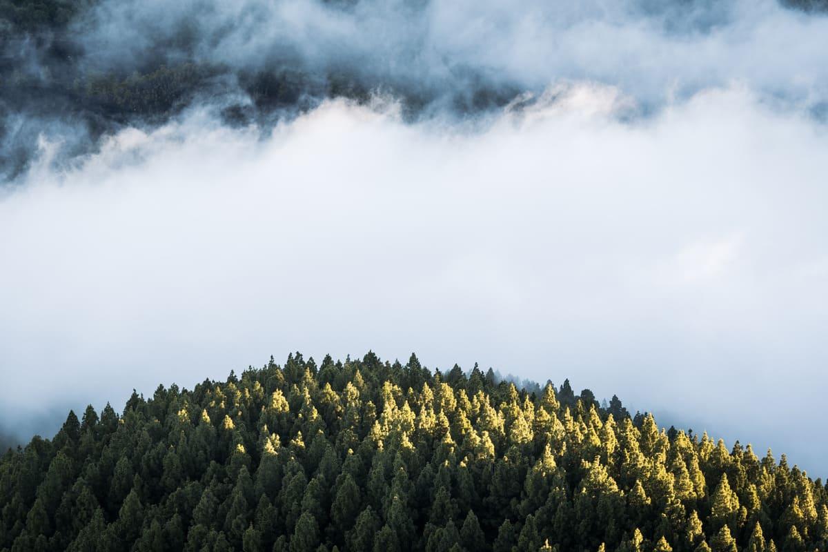 photo mer de nuages randonnée sommet volcan Pico Birigoyo île La Palma Canaries Espagne Wild Spot